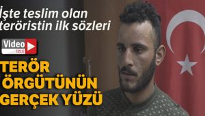 Teslim olan terörist: 'PKK domuzlarıyla savaşan gençlere sesleniyorum kendilerini Türk devletine teslim etsinler'