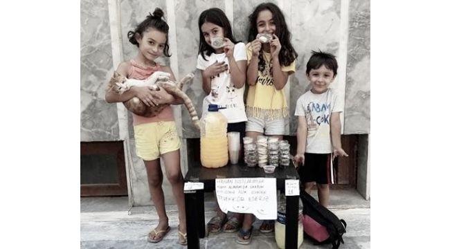 Sokak hayvanları için limonata ve kurabiye sattılar