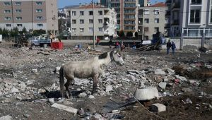 Karşıyaka'da yıkım operasyonu