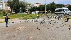 Karabağlar Belediyesi Can Dostlarını Unutmadı