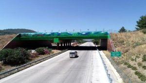 Ekolojik köprü tamamlandı