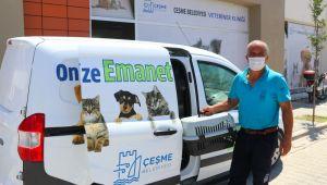 Sokak hayvanlarına ücretsiz veterinerlik hizmeti