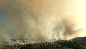 Çeşme'deki yangına havadan müdahale başladı