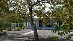 Üretici hobi bahçeleri kararı için 1 Ekim'i bekliyor