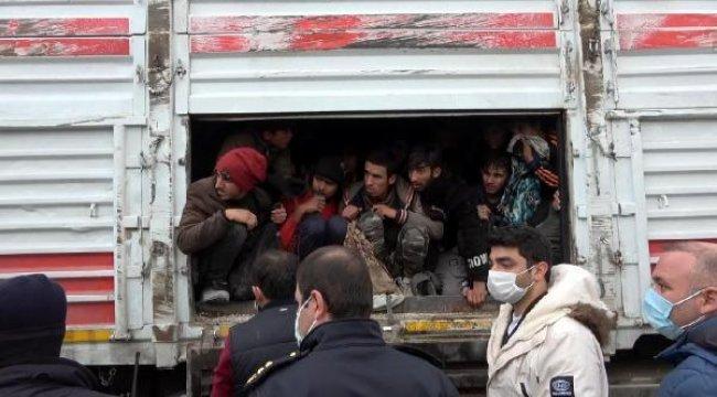 114 kaçak göçmen taşınan TIR'ın sürücüsü sorguda