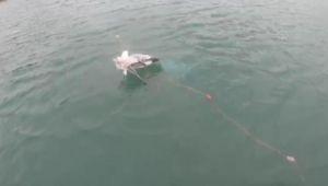 Ağa takılan martıyı Sahil Güvenlik ekibi kurtardı